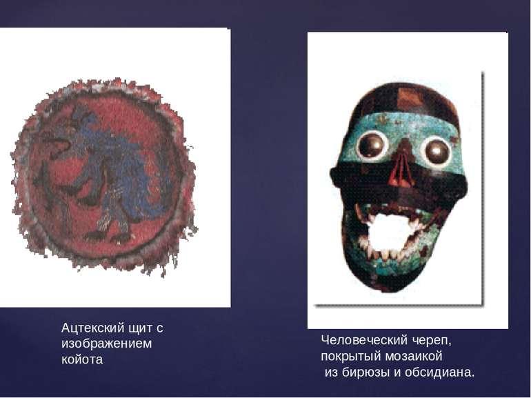 Ацтекский щит с изображением койота Человеческий череп, покрытый мозаикой из ...