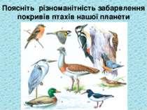 Поясніть різноманітність забарвлення покривів птахів нашої планети
