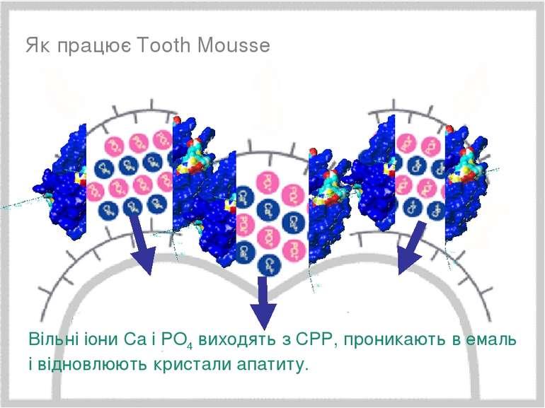 Минимальное вмешательство, 15/05/2006 * Як працює Tooth Mousse Вільні іони Ca...