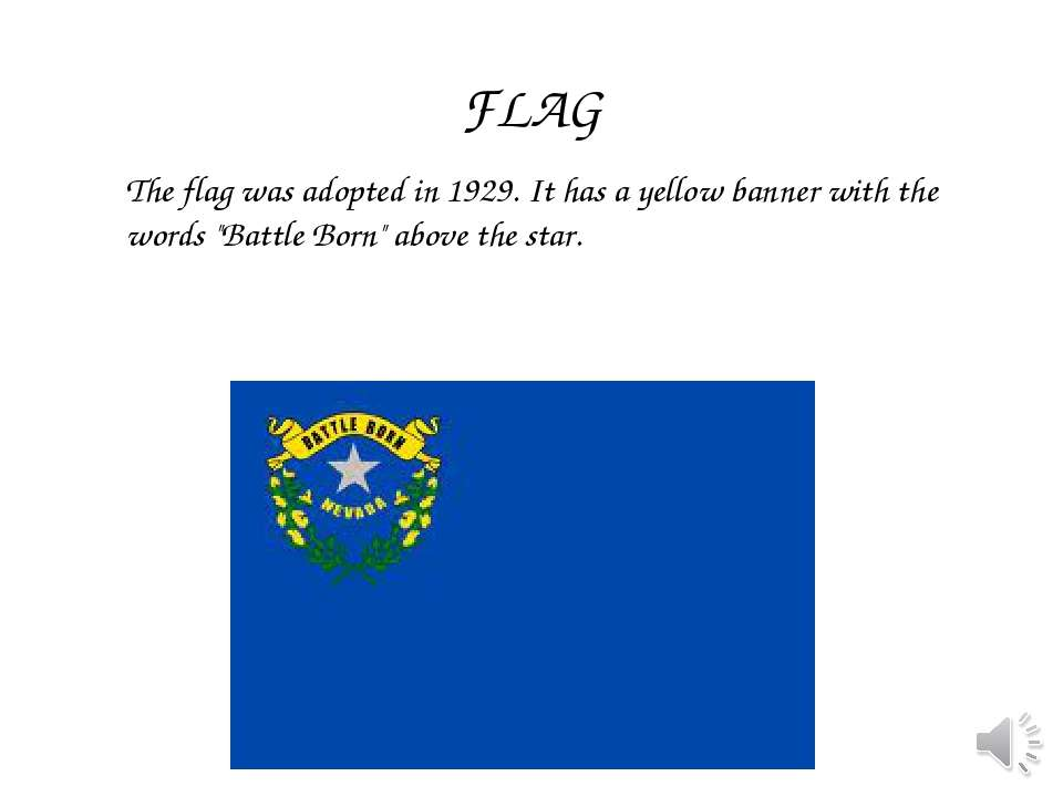 "The flag was adopted in 1929. It has a yellow banner with the words ""Battle B..."