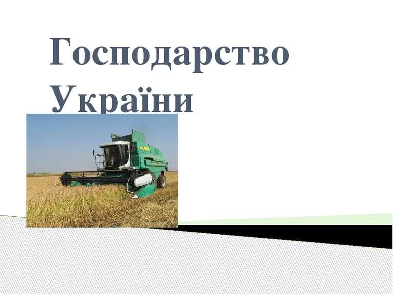 Господарство України