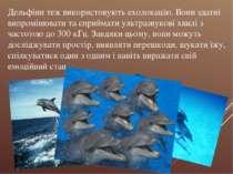 Дельфіни теж використовують ехолокацію. Вони здатні випромінювати та сприймат...