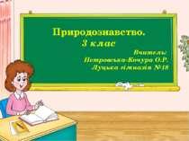 Природознавство. 3 клас Вчитель: Петровська-Кочура О.Р. Луцька гімназія №18