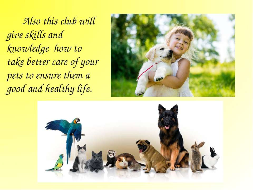 Also this club will give skills and knowledge how to take better care of your...
