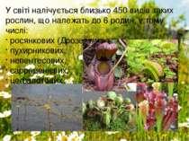 У світі налічується близько 450 видів таких рослин, що належать до 6родин, у...