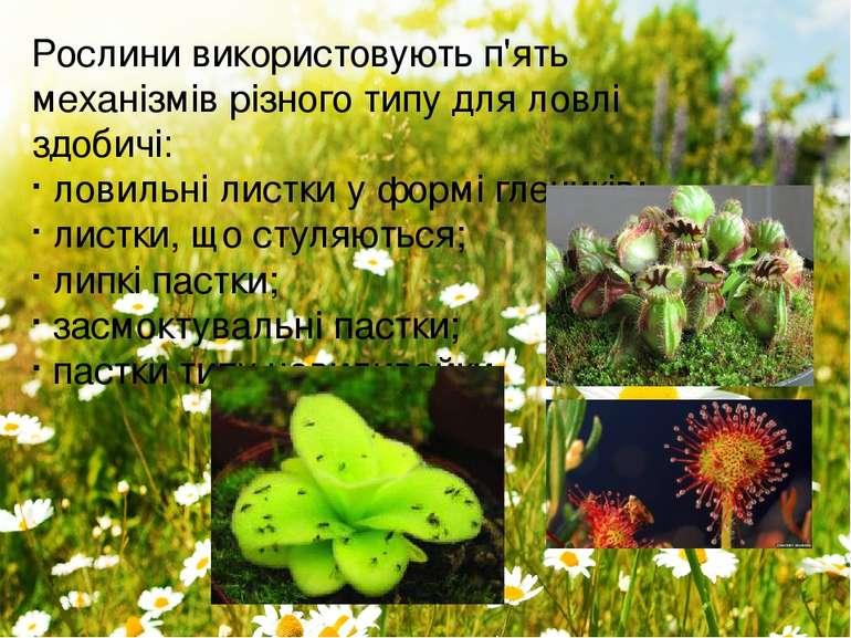 Рослини використовують п'ять механізмів різного типу для ловлі здобичі: ловил...