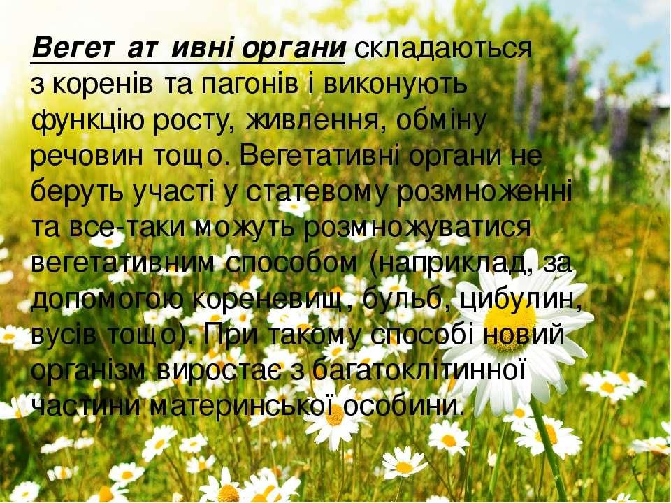 Вегетативні органискладаються зкоренів та пагонів івиконують функцію росту...