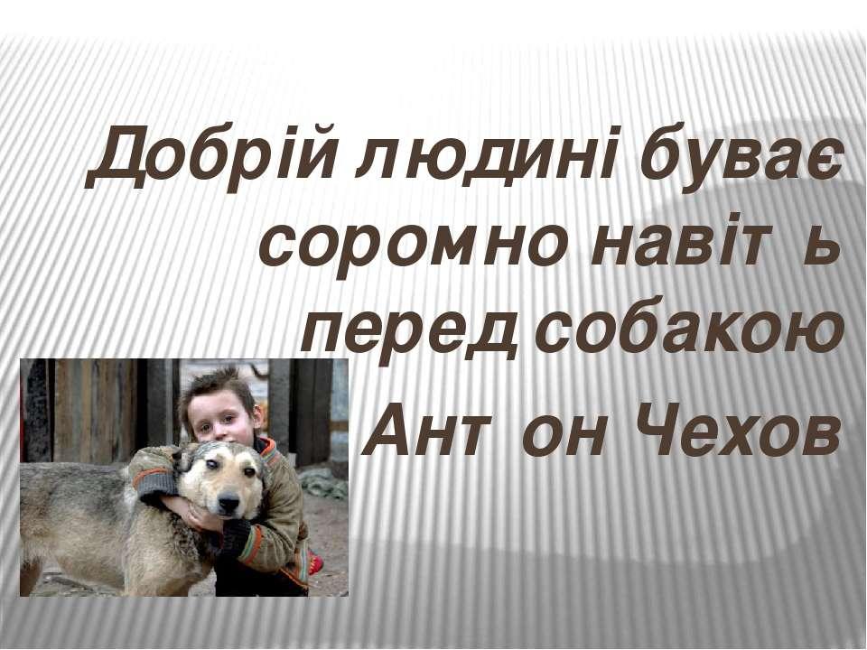 Добрій людині буває соромно навіть перед собакою Антон Чехов