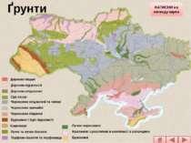 Дерново-піщані Дерново-підзолисті Дерново-опідзолені Сірі лісові Чорноземи оп...