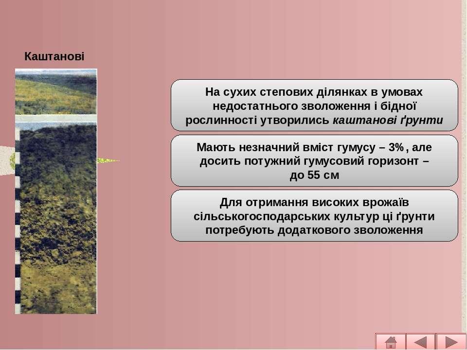 Основні типи ґрунтів рівнинної частини На сухих степових ділянках в умовах не...