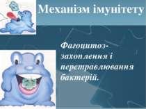 Механізм імунітету Фагоцитоз- захоплення і перетравлювання бактерій.