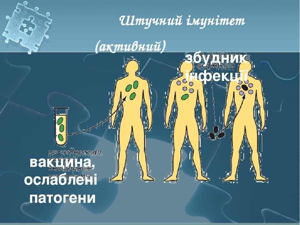 Штучний імунітет (активний) вакцина, ослаблені патогени збудник інфекції