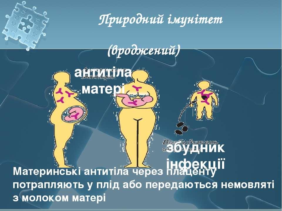 Материнські антитіла через плаценту потрапляють у плід або передаються немовл...