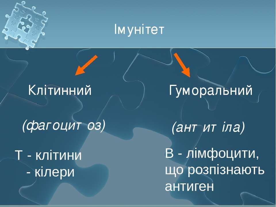 Імунітет Клітинний Гуморальний (фагоцитоз) (антитіла) Т - клітини - кілери В ...