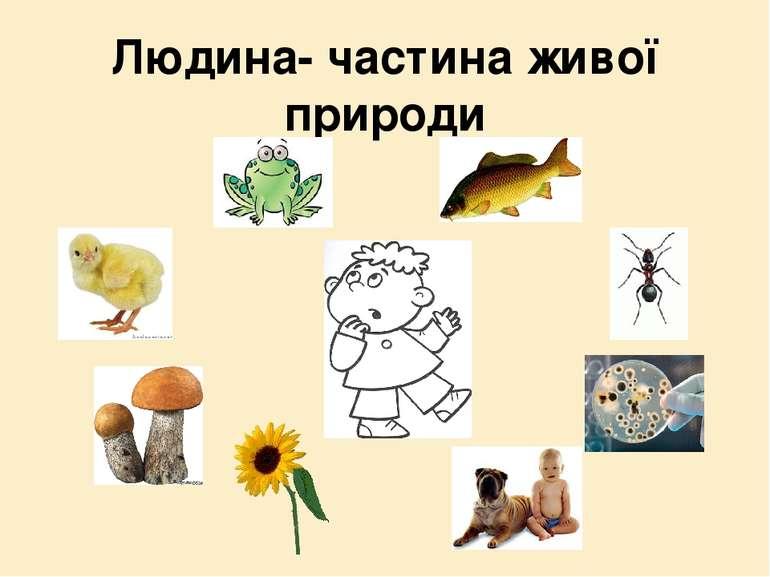 Людина- частина живої природи