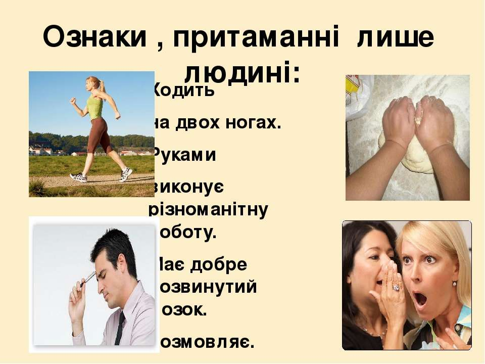 Ознаки , притаманні лише людині: Ходить на двох ногах. Руками виконує різнома...