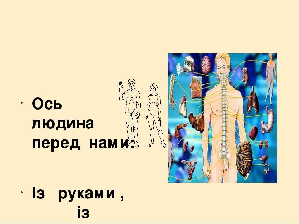 Ось людина перед нами: Із руками , із ногами, Тулуб є і голова, І органів сис...