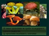 В таких організмів як гриби та водорості тканини выдсутні. Ці організми назив...