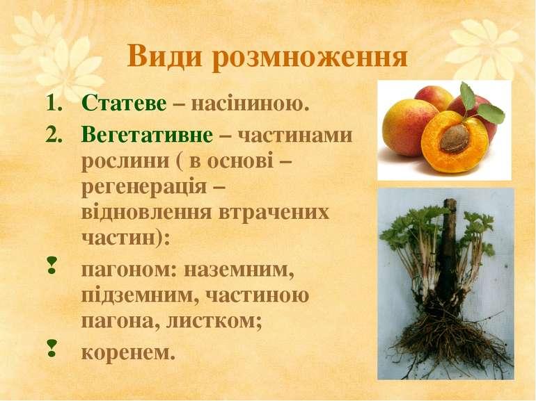 Види розмноження Статеве – насіниною. Вегетативне – частинами рослини ( в осн...