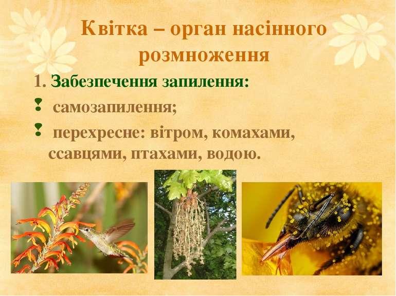 Квітка – орган насінного розмноження 1. Забезпечення запилення: самозапилення...