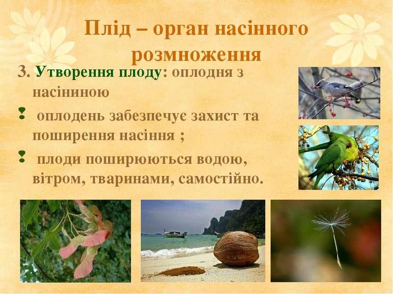 Плід – орган насінного розмноження 3. Утворення плоду: оплодня з насіниною оп...