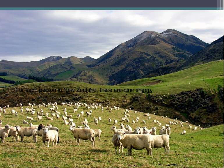 For each person in New Zealand, there are nine sheep.