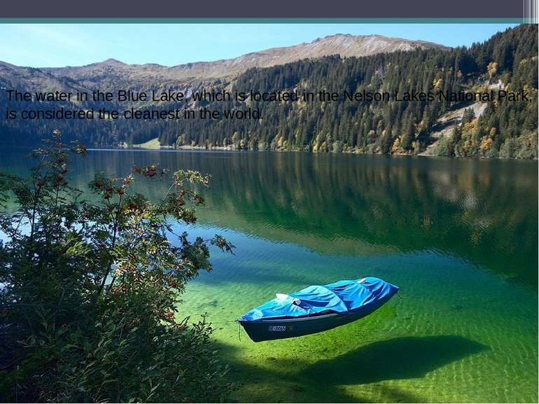 The water in the Blue Lake, which is located in the Nelson Lakes National Par...