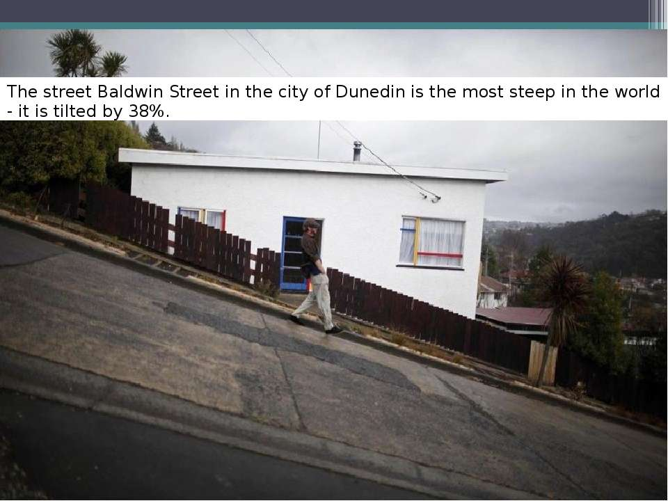 The street Baldwin Street in the city of Dunedin is the most steep in the wor...
