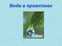 Вода в організмах