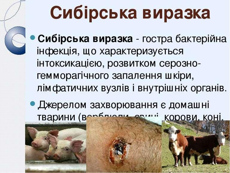 Сибірська виразка Сибірська виразка - гостра бактерійна інфекція, що характер...