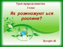 Як розмножуються рослини? Урок природознавства 3 клас Зустріч 36