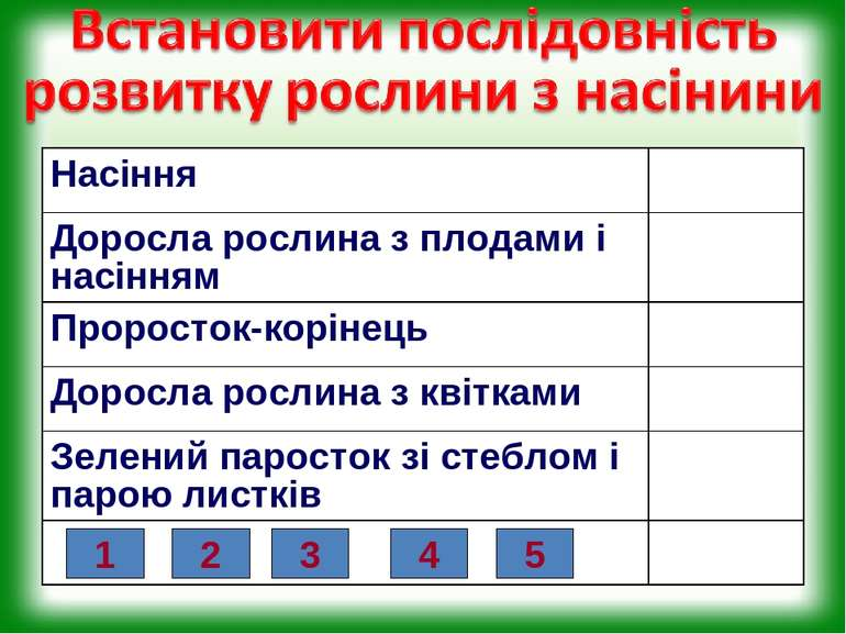 1 2 3 4 5 Насіння Доросла рослина з плодами і насінням Проросток-корінець Дор...
