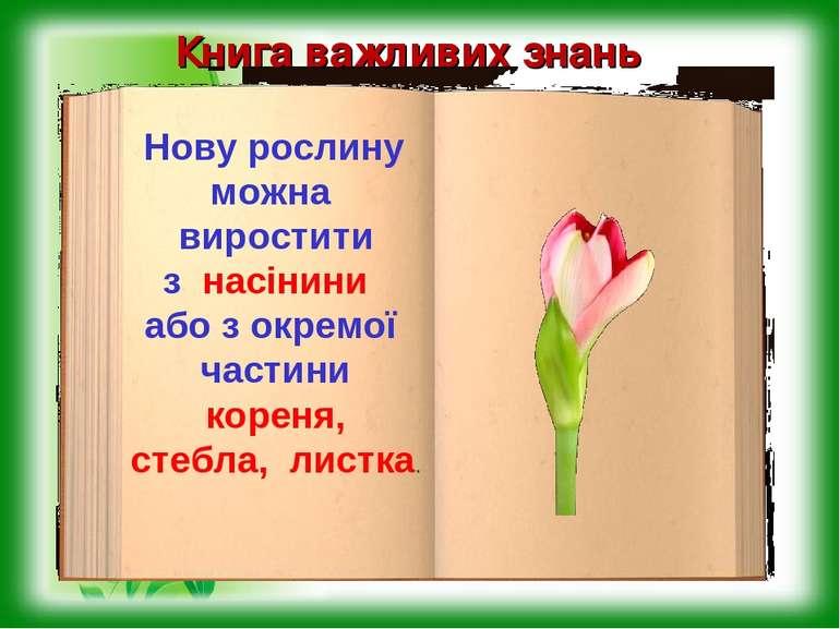 Книга важливих знань Нову рослину можна виростити з насінини або з окремої ча...