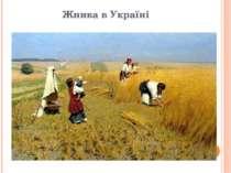 Жнива в Україні