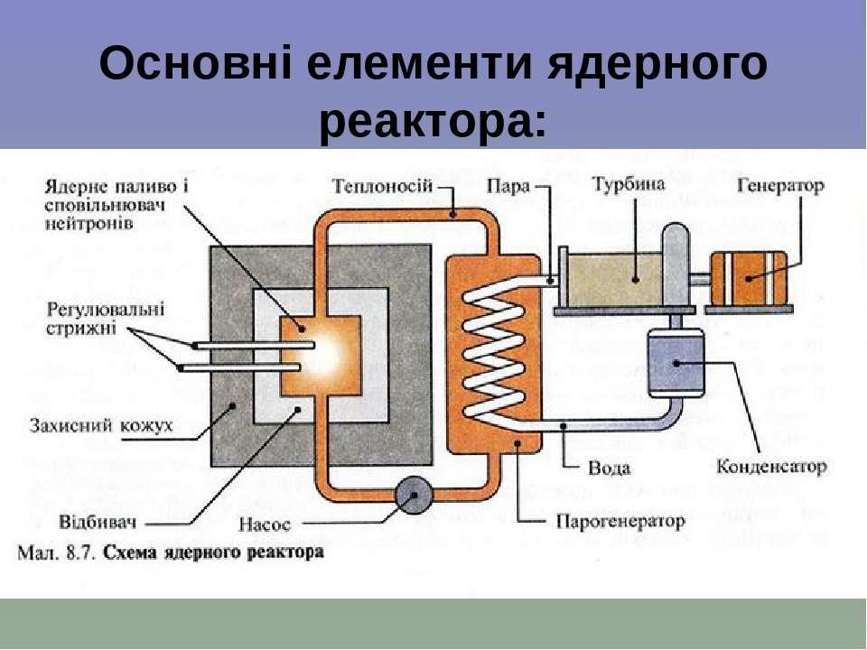 Основні елементи ядерного реактора: