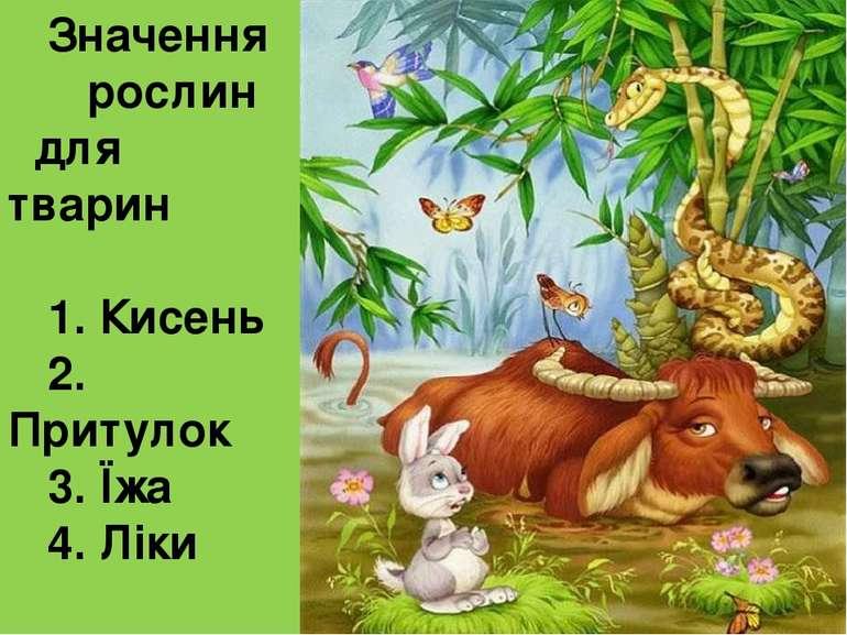 Значення рослин для тварин 1. Кисень 2. Притулок 3. Їжа 4. Ліки