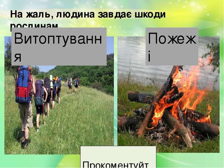 На жаль, людина завдає шкоди рослинам Витоптування Пожежі Прокоментуйте