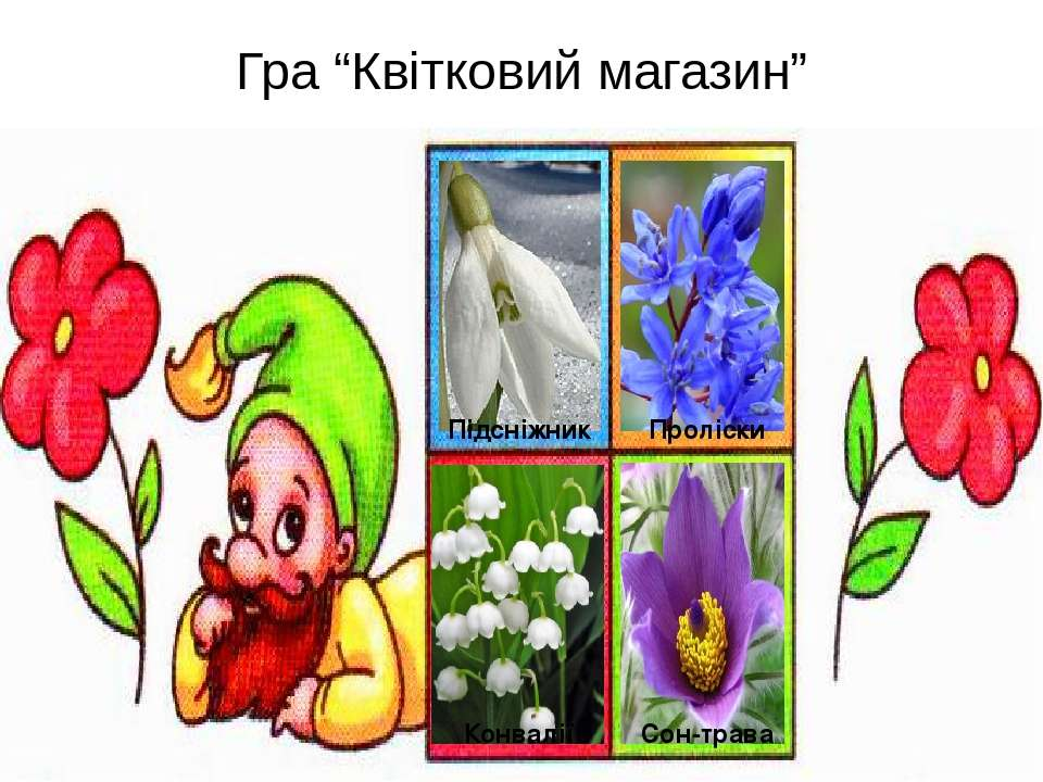 """Гра """"Квітковий магазин"""" Підсніжник Проліски Конвалії Сон-трава"""