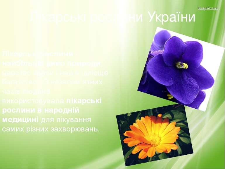 Лікарські рослини України Лікарські рослини - найбільше диво природи, царство...
