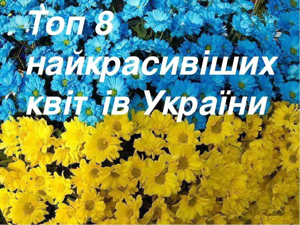Топ 8 найкрасивіших квітів України