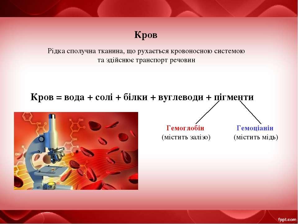 Кров Рідка сполучна тканина, що рухається кровоносною системою та здійснює тр...