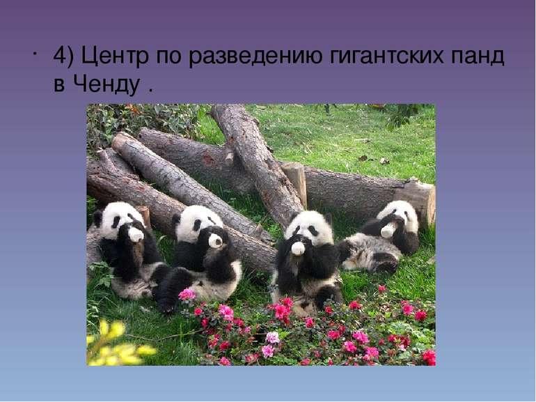4) Центр по разведению гигантских панд в Ченду.  4) Центр по разв...