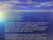 Страшна епоха Золотої орди, Кримської орди. Щороку з України забирали в орду ...