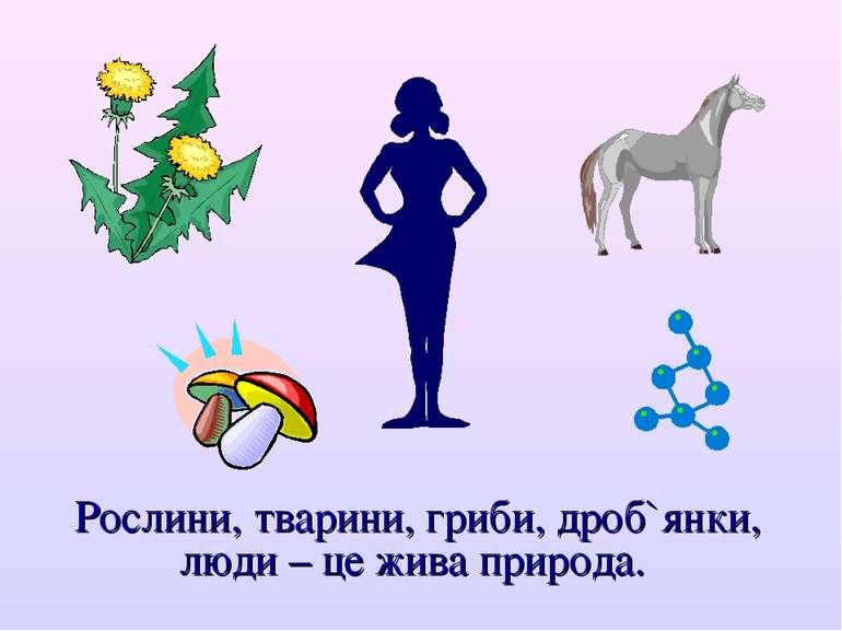 Рослини, тварини, гриби, дроб`янки, люди – це жива природа.