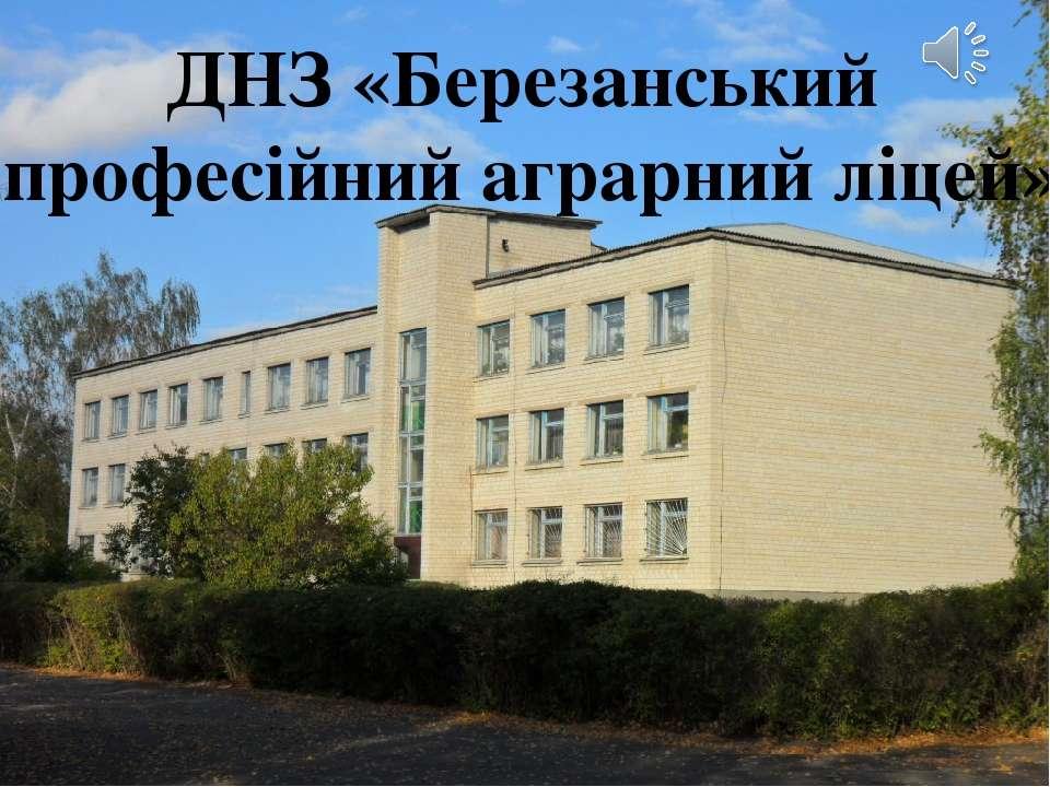 ДНЗ «Березанський професійний аграрний ліцей»