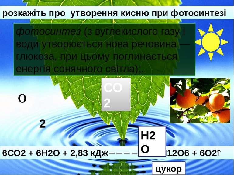 розкажіть про утворення кисню при фотосинтезі 6СО2 + 6Н2О + 2,83 кДж С6Н12О6 ...