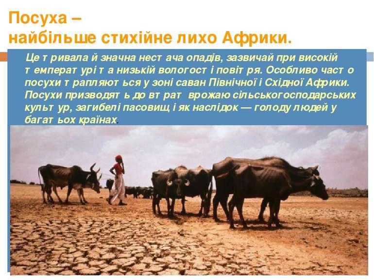 Посуха – найбільше стихійне лихо Африки. Це тривала й значна нестача опадів, ...