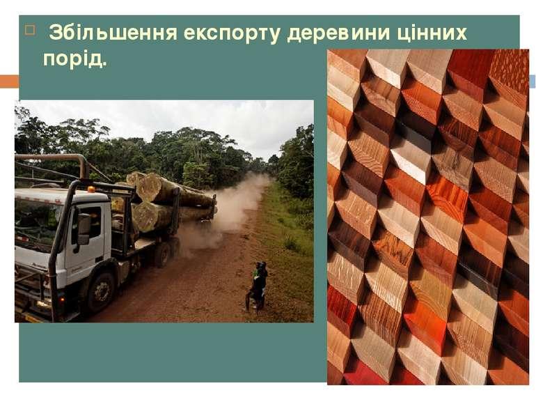 Збільшення експорту деревини цінних порід.