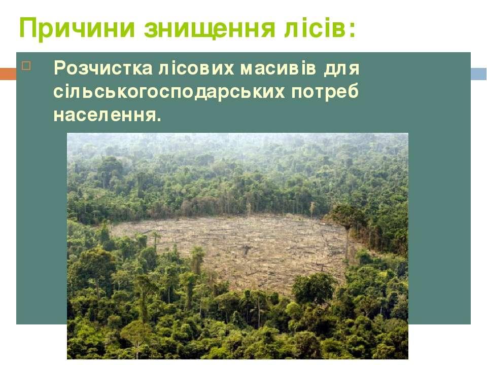 Причини знищення лісів: Розчистка лісових масивів для сільськогосподарських п...