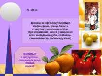 ВіТАМіН АСКОРБіНОВА К-ТА Допомагає організму боротися з інфекціями, краще бач...